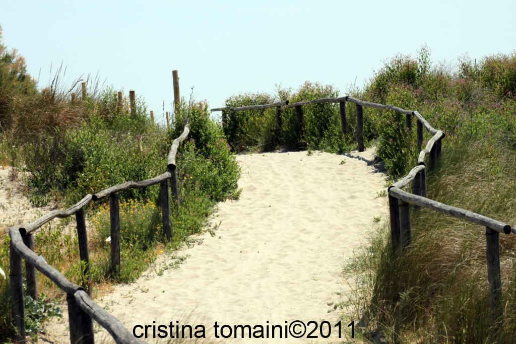 sentiero nel Giardino Botanico di porto Caleri