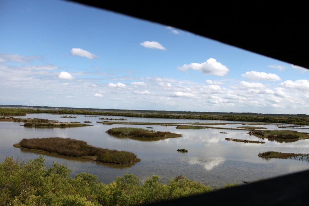 Riserva ornitologica La Teich: capanni di osservazione