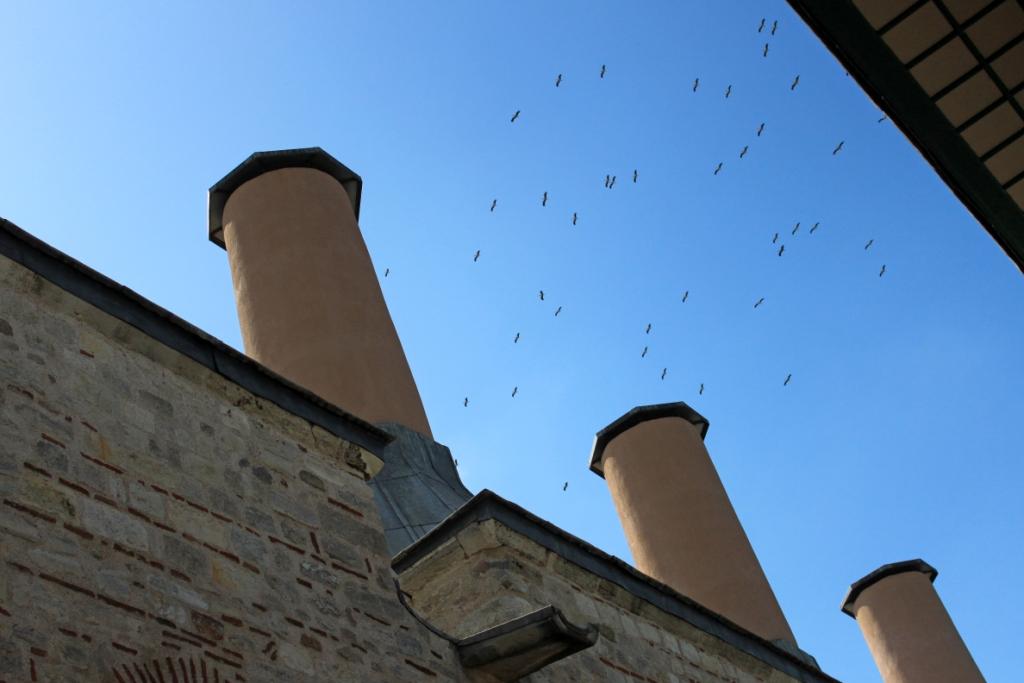 gru tra i camini delle cucine, Palazzo Topkapi